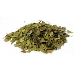 Ginkgo Leaf cut 2oz (Ginko biloba)